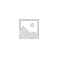 Беспроводной модем данных Bluetooth модели «AMB 2300» (дооснащение testo 350) (0460 0935)